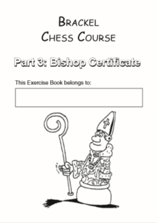 Bishop Workbook: Easy mating patterns and other basics (Intermediate)